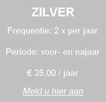 Call to Action Zilver 1