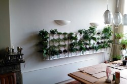 Vertical Garden en Corner modules